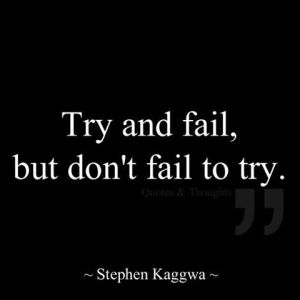 try and fail but don't try to fail