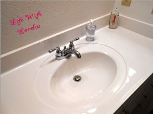 Shiny Sink and Countertop
