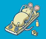 Nervous System Mouse Exercise