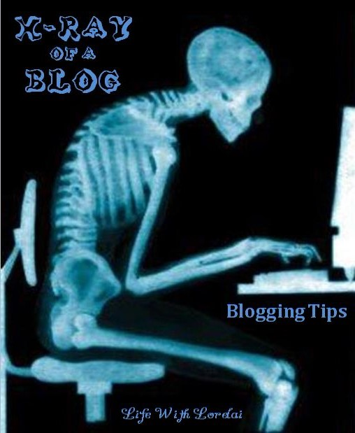 X-ray of a Blog - Blogging Tips - Life With Lorelai