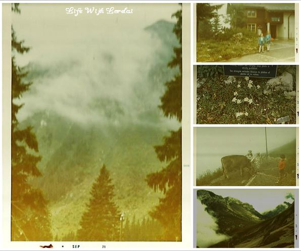 Family Trip Mount Pilatus, Switzerland 1971 - Collage2