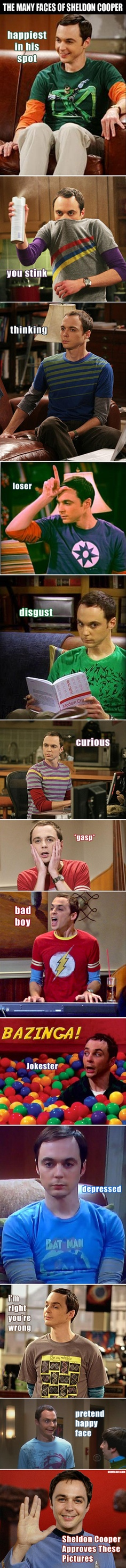 Many Faces of Sheldon Cooper - Big Bang Theory
