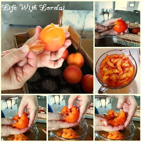 Nectarine Peel and Slice Collage