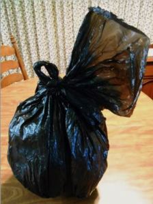 Pumpkin in Plastic Bag for Preservation | Life With Lorelai